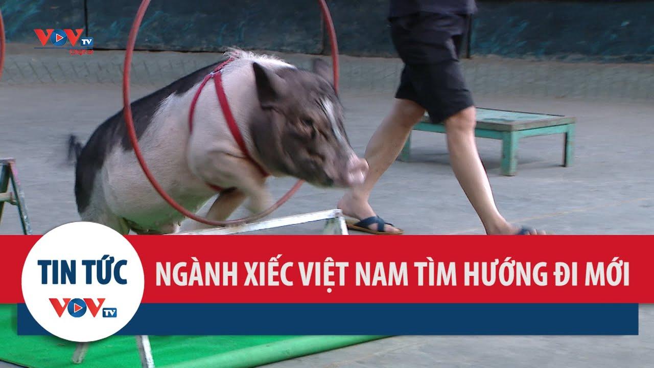 Ngành xiếc Việt Nam tìm hướng đi mới từ các động vật là thú nuôi